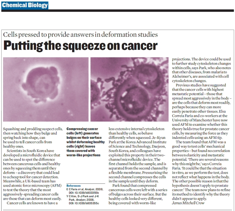 Putting the squeeze on cancer cells_full story.jpg